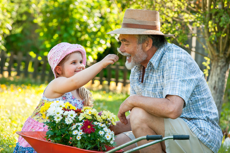 A grandfather and granddaughter participate in an intergenerational activity, gardening