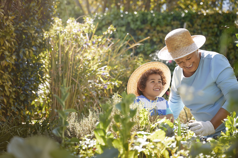 Senior and child gardening outdoors in the spring.